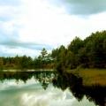 jezioro2-kopie
