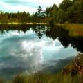 jezioro3-kopie