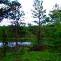 jezioro5