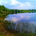 jezioro7