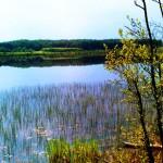 jezioro82Kopie