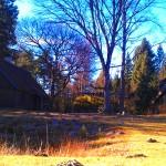 Niedaleko nas, ukryta w starych lasach stara, słowianska osada...
