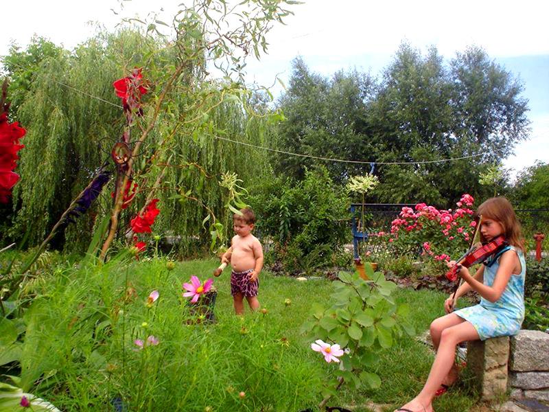 raj w ogrodzie